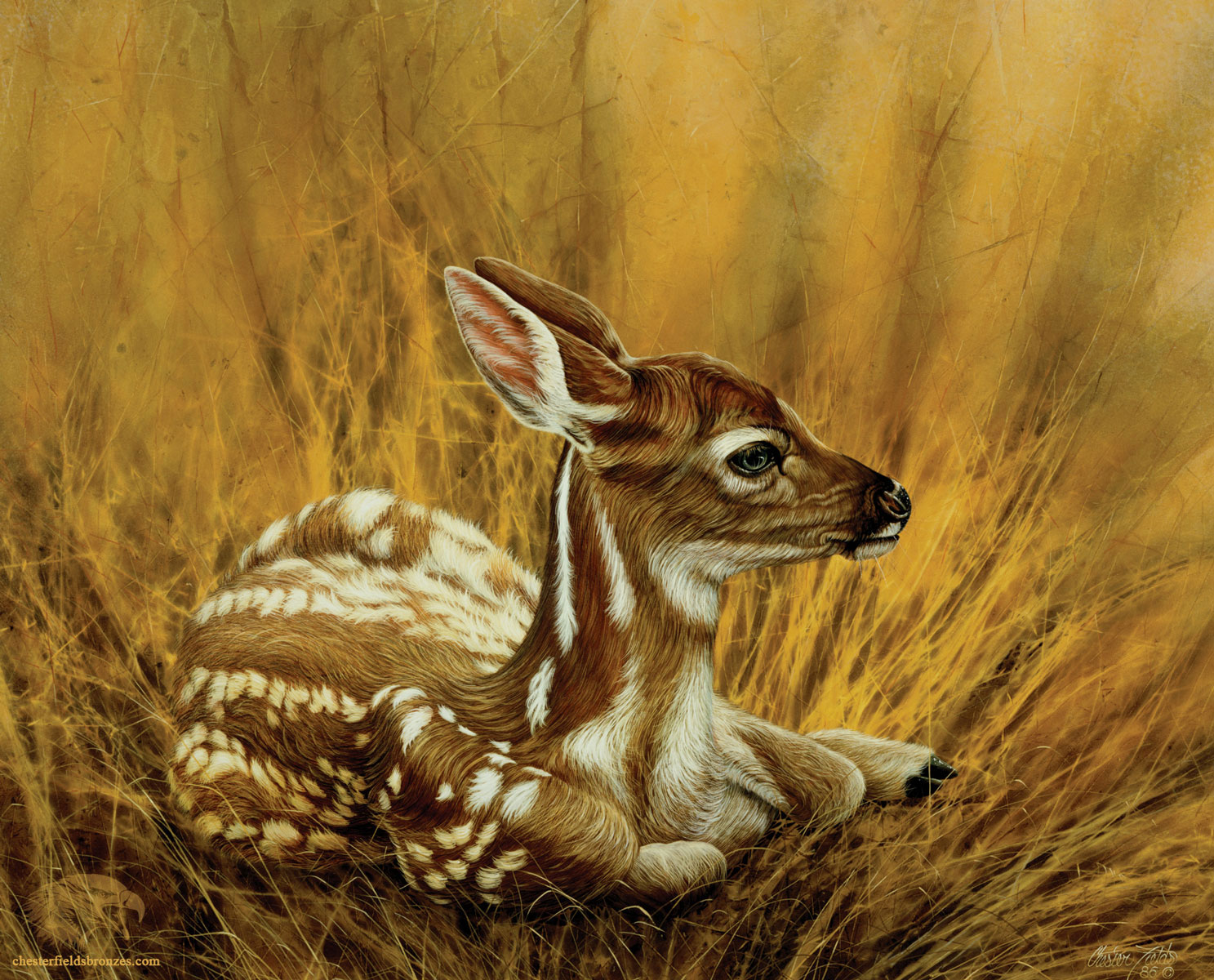 fine art wildlife paintings archives