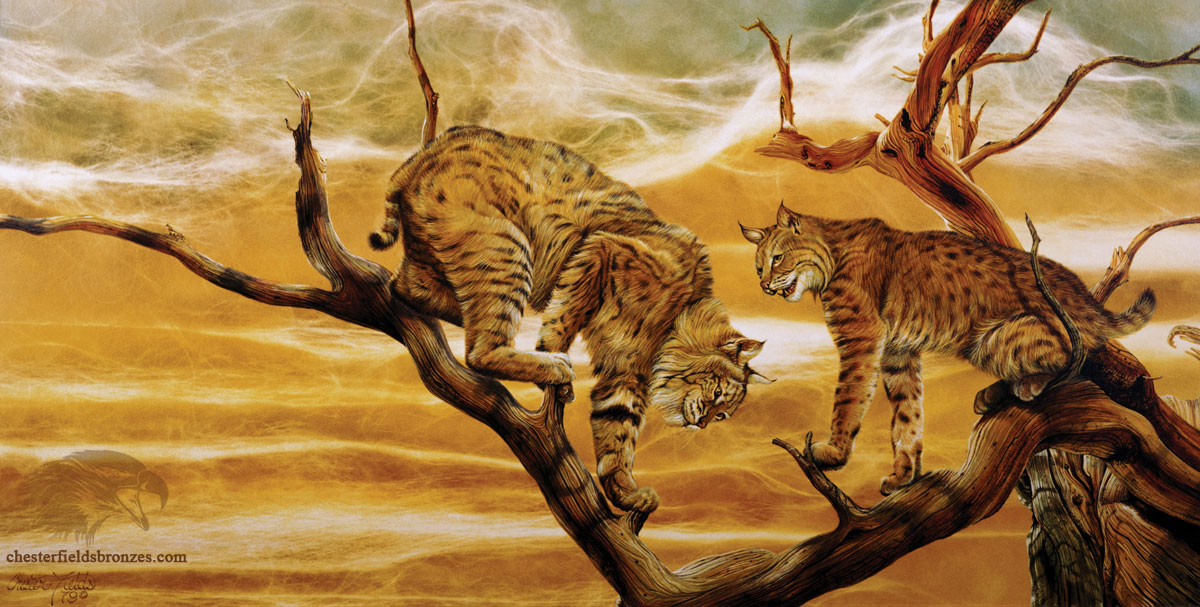 Quot Copy Cats Quot Wildlife Art Lynx Painting